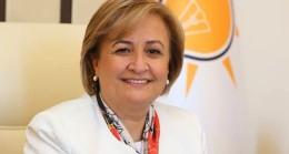 Milletvekili Satır'dan Mina açıklaması
