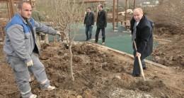 Beykoz Belediyesi'nin meyve bahçesinde bahar hazırlığı