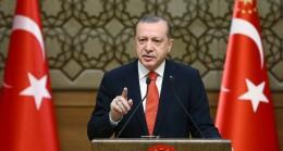 Cumhurbaşkanı Erdoğan, Şehit Fethi Seki'nin ailesiyle telefonda görüştü