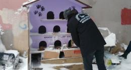 Üsküdar Belediyesi, sokak hayvanlarını unutmadı