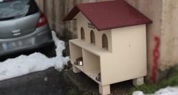 Üsküdar Belediyesi, kedi evi getirerek sorunu çözdü