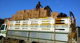 İHLAS Vakfı yardımları Somaliland'da