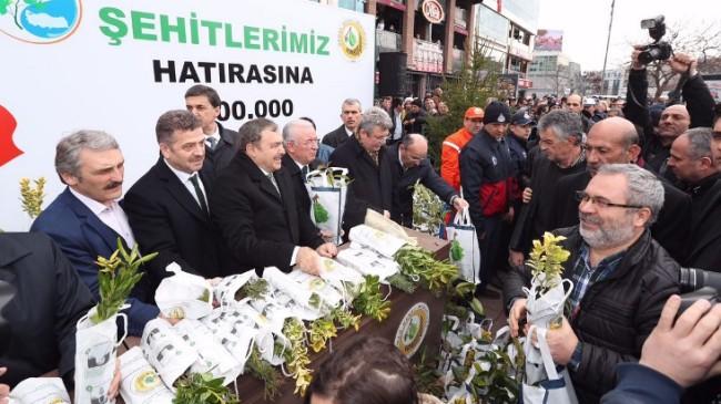 Bakan Eroğlu'ndan ağaç sözü