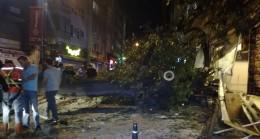 Kadıköy'de asırlık ağaç devrildi