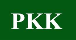 Sosyal medya PKK sevicileri gözaltında