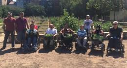 Üsküdarlı engelli vatandaşların hasat zamanı