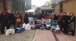 Beykozlu AK Kadınlardan evsiz kedilere 300 ev