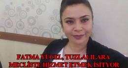 Fatma Yücel, Tuzla halkını mecliste temsil etmek istiyor