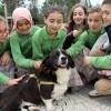 İBB'den çocuklara sokak hayvanlarının bakımı ve beslenmeleri ile ilgili eğitim