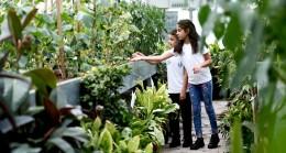 Bağcılar Belediyesi, öğrencilere organik tarımı uygulamalı öğretiyor