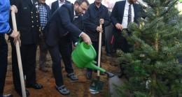 """Başkan Ahmet Cin, """"Pendik'teki yeşil alan miktarı ülke ortalamasının üstünde"""""""