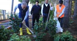 Şifa Parkuru'nun ilk fidanını Belediye Başkanı Ahmet Poyraz dikti