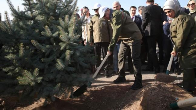 Türkiye'de 11 Milyon Ağaç; 11.11.2019 tarihinde saat 11.11'de, 2 bin 23 ayrı noktada, aynı anda dikildi