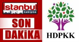 HDPKK'lı Belediyelere kayyum atandı!