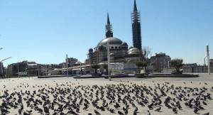 Taksim Meydanı özgür kuşlara kaldı