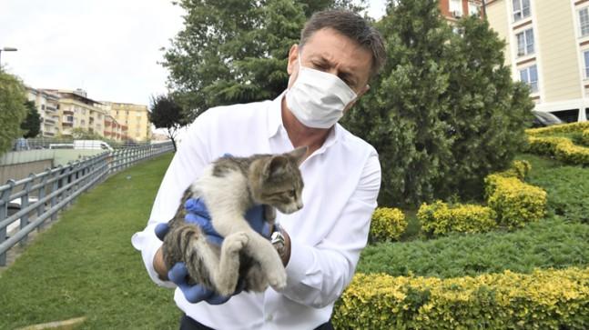 Başkan Bahadır yavru kediyi kurtardı