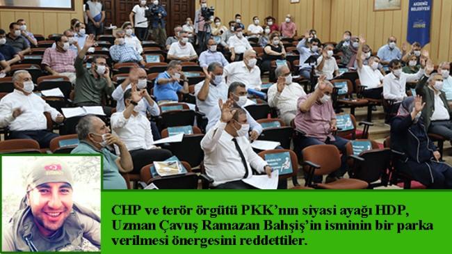 CHP ve PKK'nın arka bahçesi HDP, şehidimizin kemiklerini sızlattı!