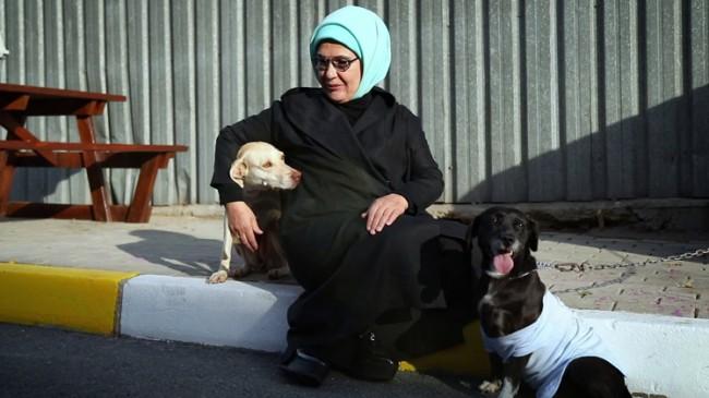 Emine Erdoğan, 'Leblebi' isimli engelli bir köpeği de sahiplendi