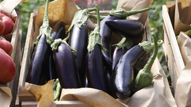 Eylül ayının zam lideri patlıcan