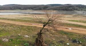 Barajlardaki kuraklık korkutuyor