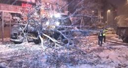 Ağacın devrilmesiyle yol trafiğe kapandı
