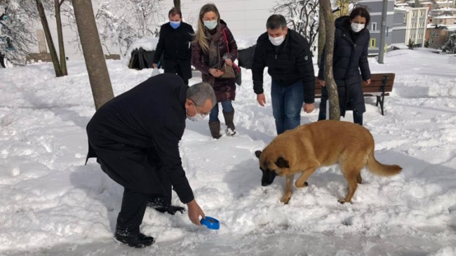 Başkan Erdem ve ekibi sokak hayvanları için farkındalık oluşturdu