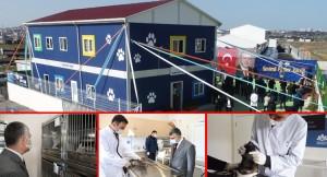 Sultanbeyli Belediyesi'nden Sokak Hayvanları için özel klinik