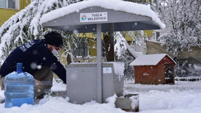 Tuzla Belediyesi sokak dostlarını unutmadı