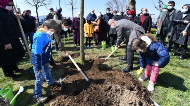 Üsküdar'da Salacak Sahili'nde katledilen ağaçların yerine yenileri dikildi