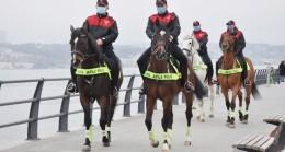 Üsküdar'da atlı polislere yoğun ilgi