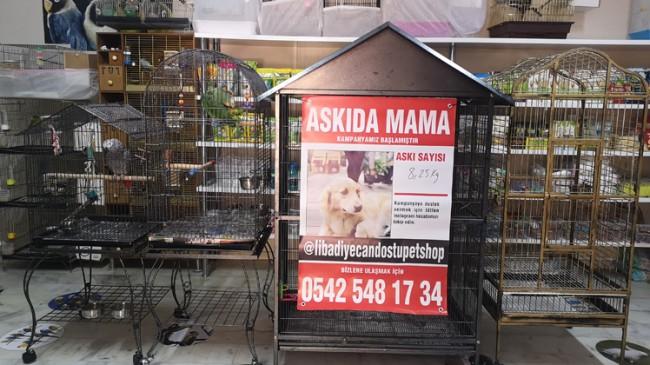 """Üsküdar'da evcil hayvanlar için """"Askıda Mama"""" uygulaması başladı"""