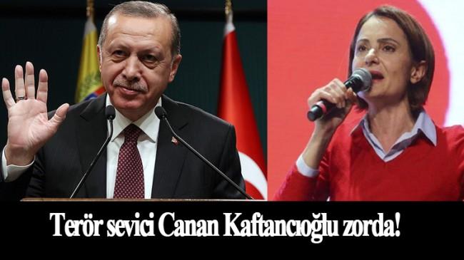 Erdoğan'ın Kaftancıoğlu'na açtığı davanın detayları ortaya çıktı