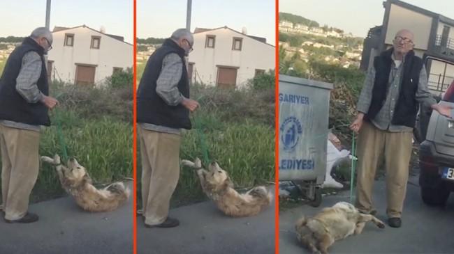 Köpeği sürükleyip çöpe atan vatandaş yakalandı