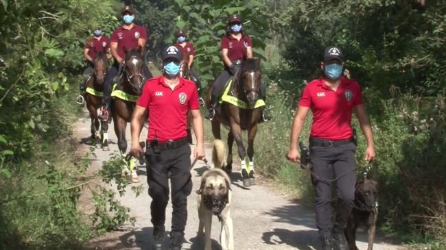 Çekmeköy'de orman yangınlarına karşı denetimler arttırıldı