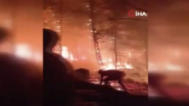 Marmaris yangınında itfaiye ekipleri ve vatandaşlar ölümle burun buruna