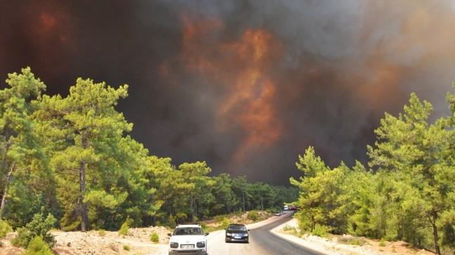 Yangınların 145'i söndürüldü, 9'u devam ediyor