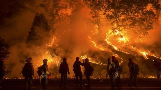 174 yangının 160'ı kontrol altına alındı, 14'ünü söndürme çalışmaları sürüyor