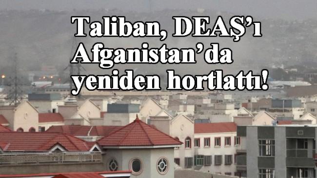 Taliban, kendi gibi terörist DEAŞ'lıları hapishanelerden boşaltınca Kabil'de olan oldu