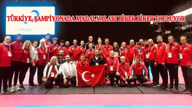 Türkiye'nin genç Taekwondocuları Avrupa Şampiyonası'nda esip gürlüyor