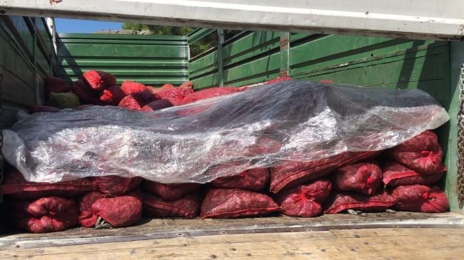 Halde 6 ton kaçak midye yakalandı