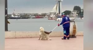 Tuzla Belediyesi'nin doğa dostu personeli ile köpeğin yürekleri ısıtan görüntüsü